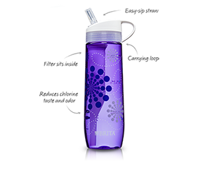 brita-bottle-homemakerchic.com
