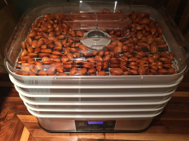 how-to-soak-and-dehydrate-raw-nuts-phytic-acid-wapf-weston-a-price