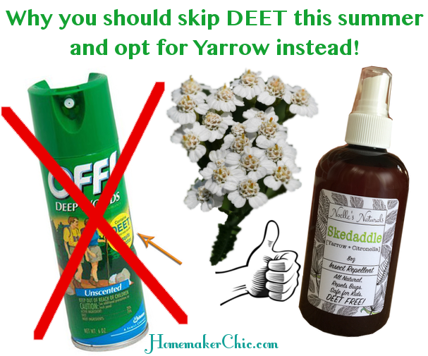 DEET-Bug-Spray-Dangerous-toxic-safe-alternative-natural-herbal-bug-spray-yarrow-organic